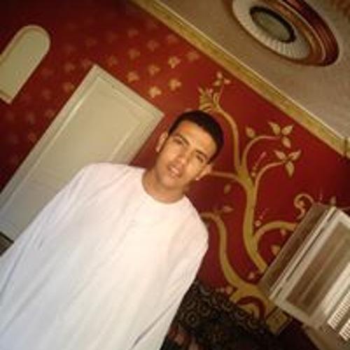 Elsultan Hussein Elshafei's avatar