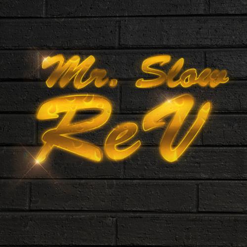 Mr Slow ReV's avatar