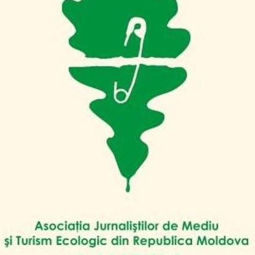 AJMTEM's avatar