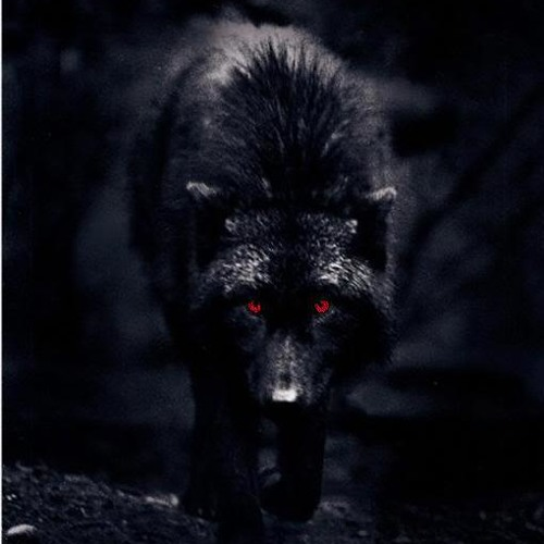 Red Eyed Wolf's stream on SoundCloud - Hear the world's sounds