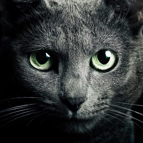 TeReLu's avatar