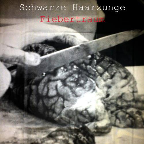 Schwarze Haarzunge's avatar
