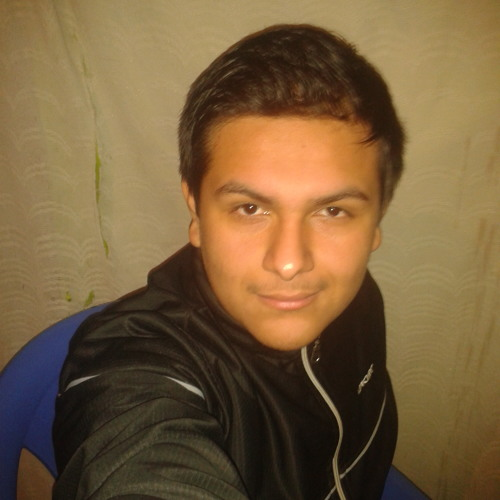 Lenny Torres Orbegozo's avatar