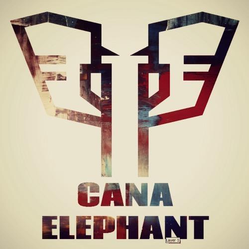 Cana Elephant \ Here We Go (Original mix)