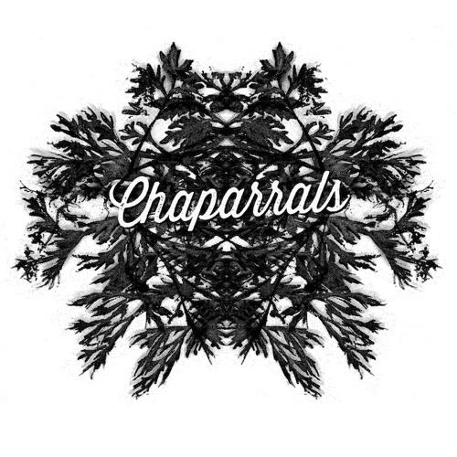 Chaparrals's avatar