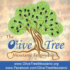 olivetreemessianic.org