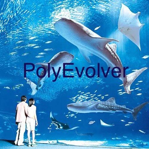 PolyEvolver's avatar