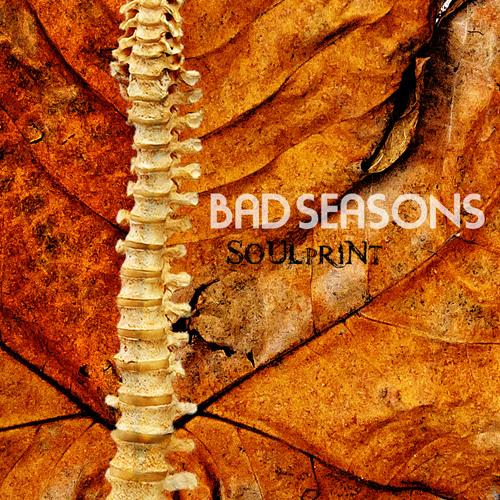 Bad Seasons's avatar