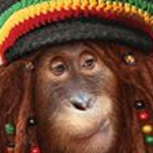 Christopher Junkin's avatar