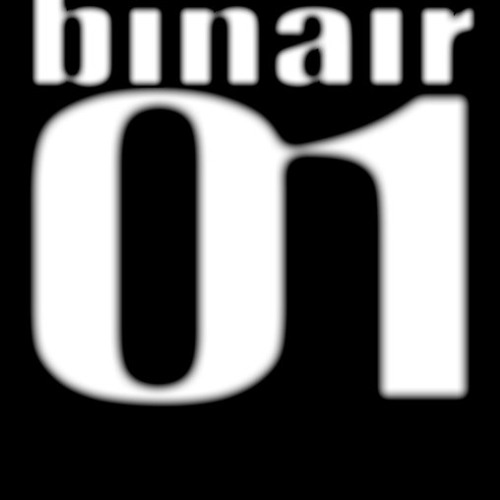 binair01's avatar