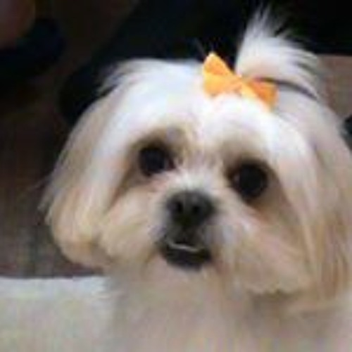 Paula Serrano 6's avatar