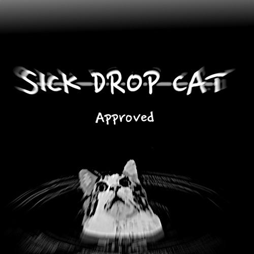 SickDropCat's avatar