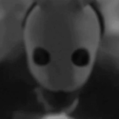 Obsxür's avatar