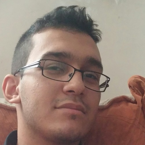 Mohammad Amin Roshan Pour's avatar