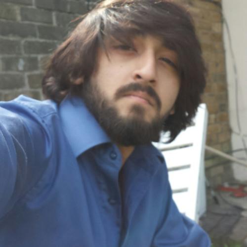 Syed Azka Shabbir's avatar