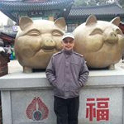 Lim Kim Tee's avatar