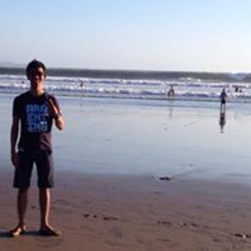 Didi Aji Setiawan 1's avatar