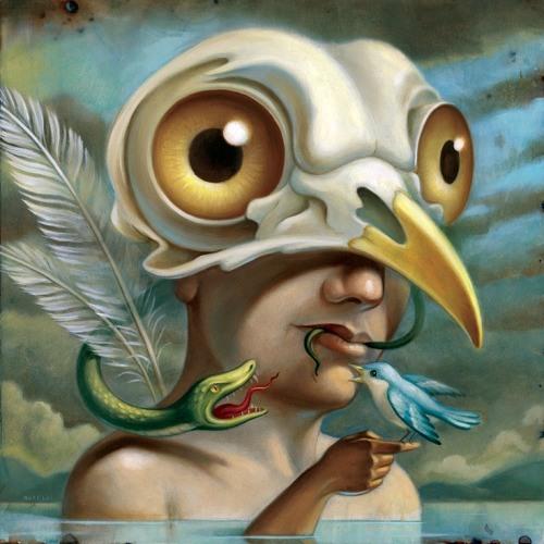 A Bird's avatar