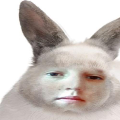 GAUDOS's avatar
