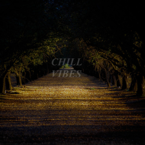 CHILL VIBES's avatar