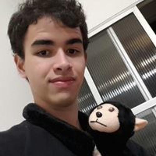 Matheus de Araujo's avatar
