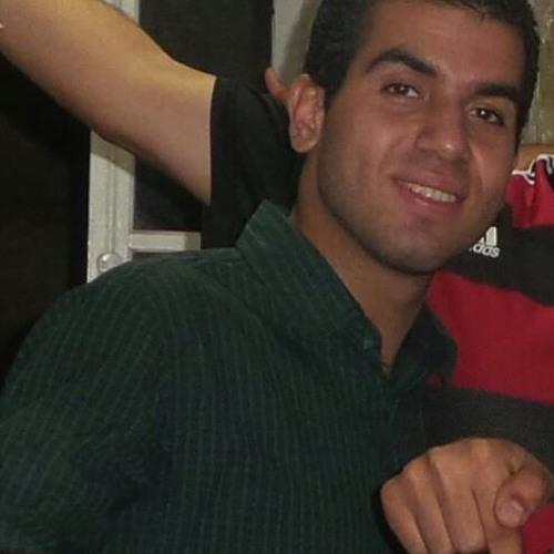 Muhammad M. Hasanin's avatar