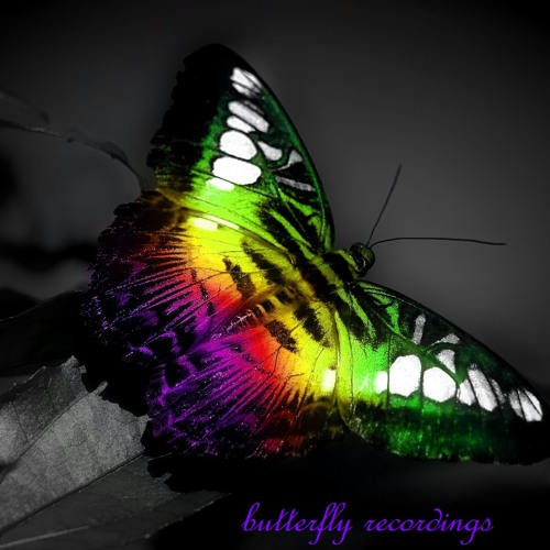 butterfly recordings's avatar