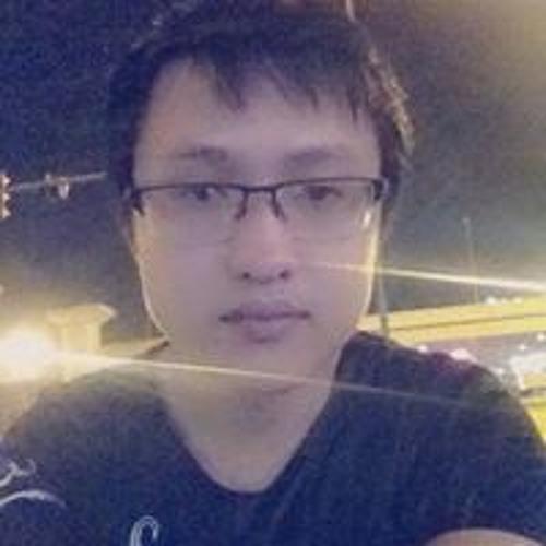 Trung Hieu Vu 1's avatar