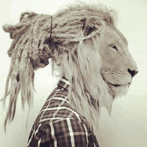 Nu Disco/Indie Dance/Deep's avatar