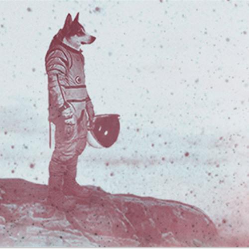 Vivl's avatar