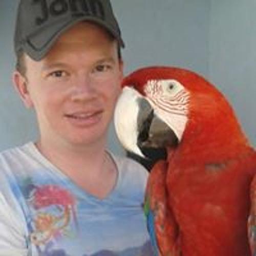 Hugo Alves Peixoto's avatar