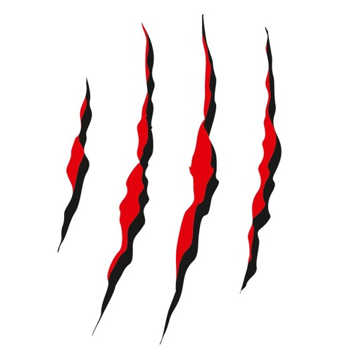 Night Animals Mgmt's avatar