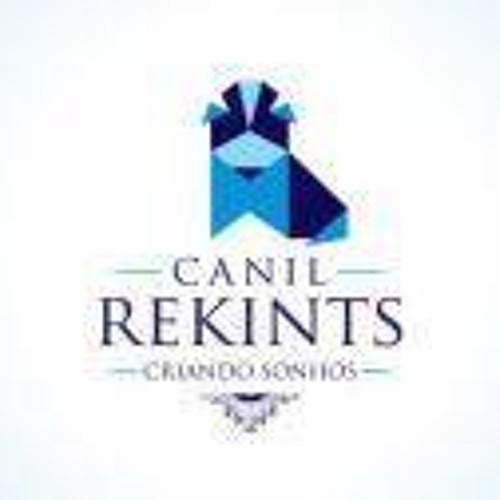 Canil Rekints Shih Tzus's avatar