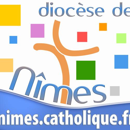 Infocom Nîmes's avatar