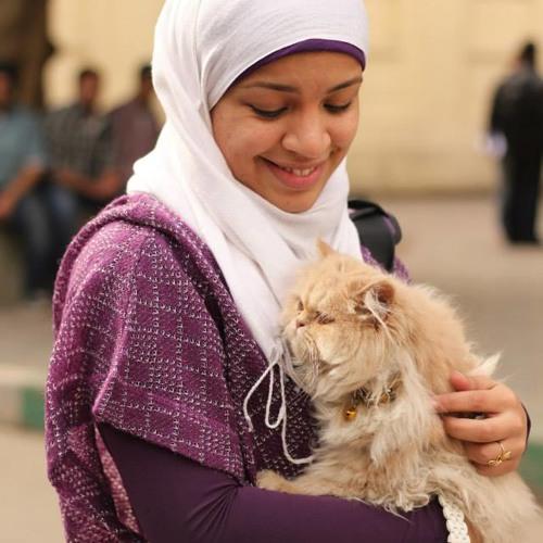 Basma  M. Imam's avatar