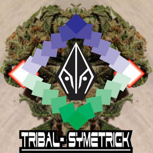 Dj-Tribal_Symetrick's avatar