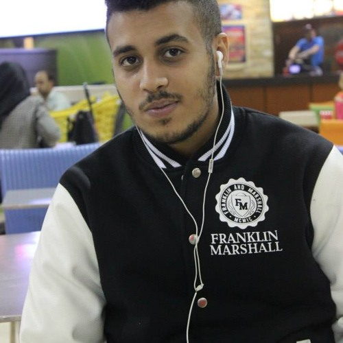 Ayman Mostafa Adham's avatar