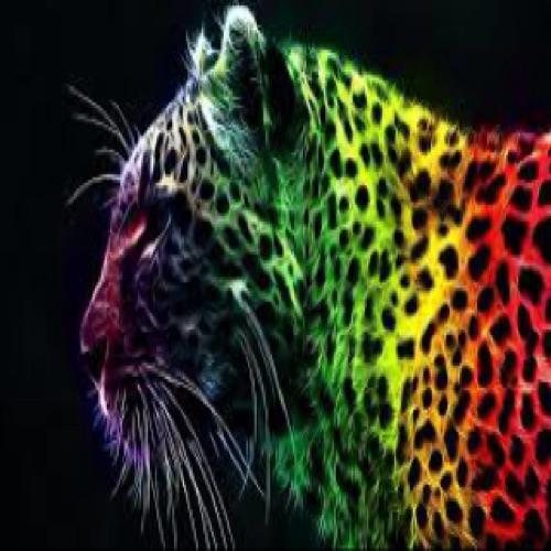 ro.c's avatar