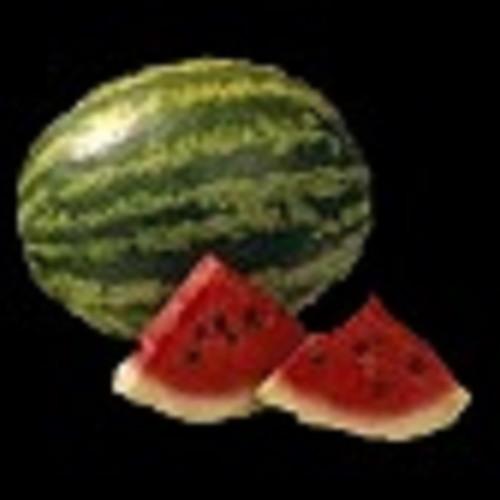 The Trust Melon's avatar