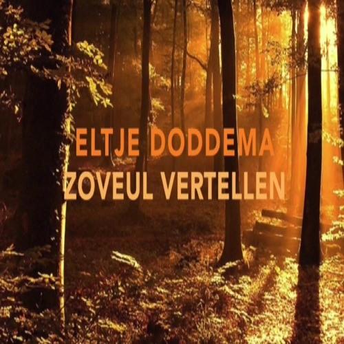 Eltje Doddema's avatar