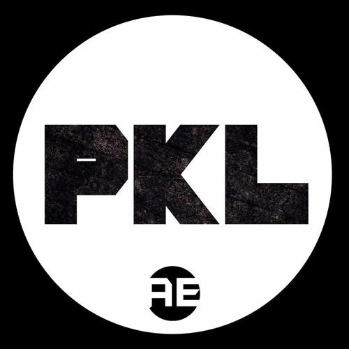 PKL [Audio Engage]'s avatar