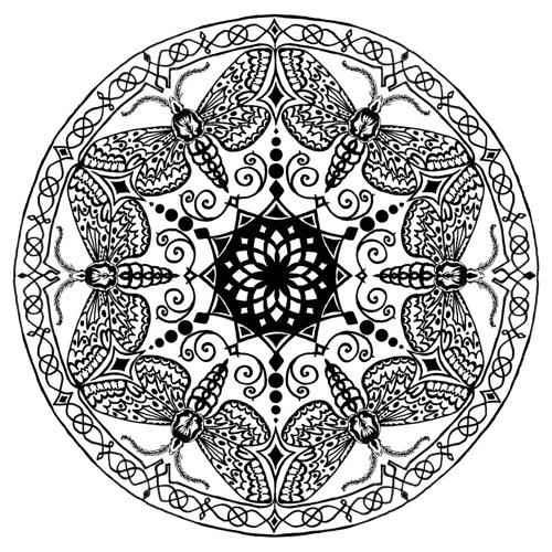 filip asajj's avatar