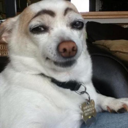 Sondorel's avatar