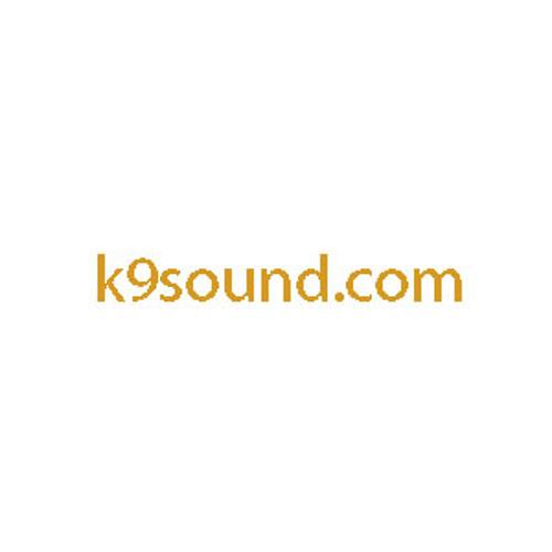 k9sound's avatar