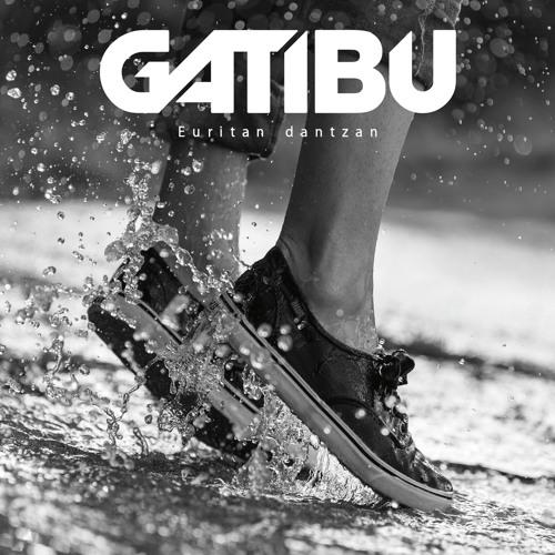 Gatibu's avatar
