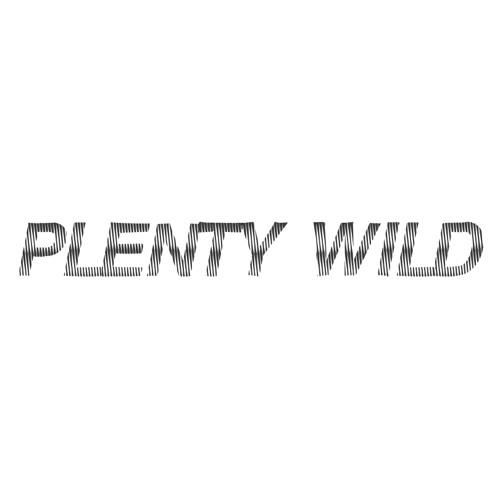 Plenty Wild's avatar