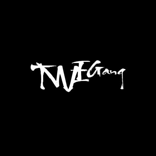 TWE GANG's avatar