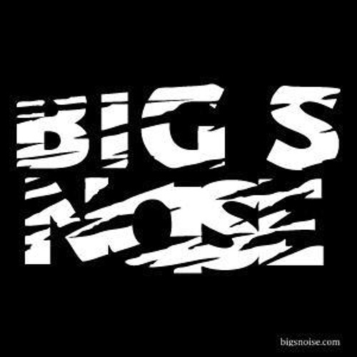 Big S Noise's avatar