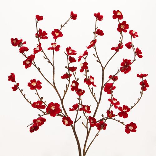 melanee flores's avatar