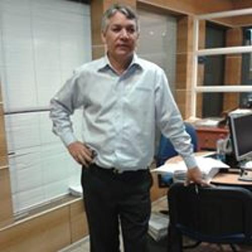 Roberto Meneses's avatar